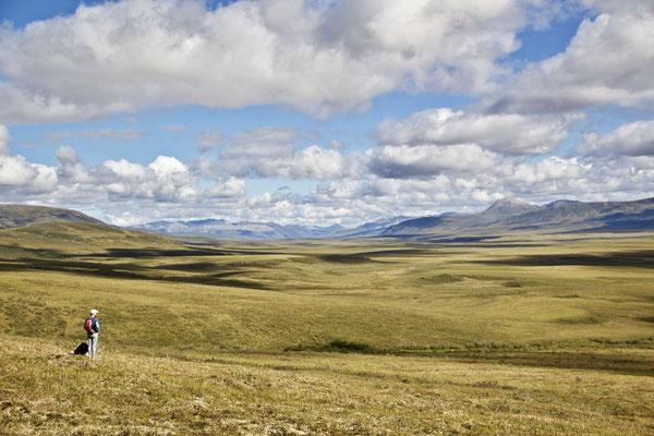 Wanderung durch die Tundra.