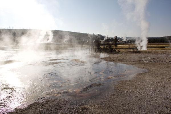 Es qualmt und dampft ganz schön in diesem Kessel, mit der weltweit höchsten Konzentration an Geysiren und heissen Quellen.