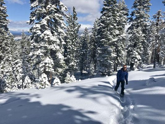 Schneeschuhlatschen in winterlicher Landschaft.