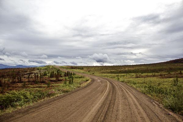 Auf dem Eagle-Plain Plateau. Ein wunderschöner Abschnitt des Highway. Ca. nach 270 Kilometer der Strecke haben wir uns entschieden, nicht bis nach Inuvik zu fahren, da gemäss anderen Reisenden die Landschaft bis Inuvik nicht mehr gross ändert.