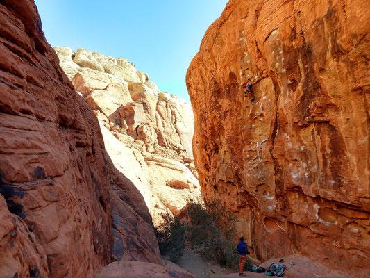Zurück in den Red Rocks haben wir mit unserem Freund Todd zum Klettern abgemacht.