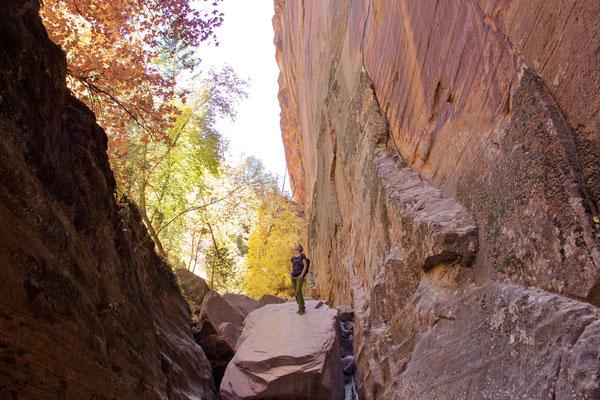 Wanderung im Hidden Canyon, Zion NP.