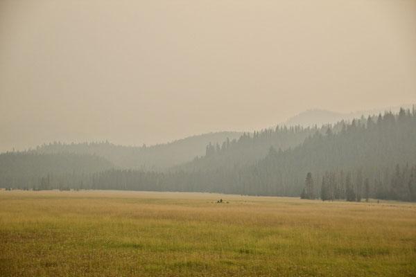 Menschenleere Prärie finden wir auch in Idaho - in der Nähe der Redfish Lakes.