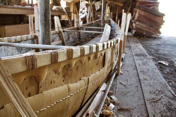 Birkenrinde wurde von den Indianern für diverse Dinge verwendet: Bootsbau…