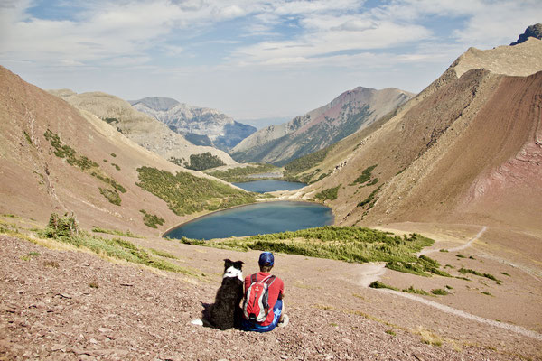 Wandern im Waterton Lakes Nationalpark - in der Nähe der Amerikanischen Grenze.