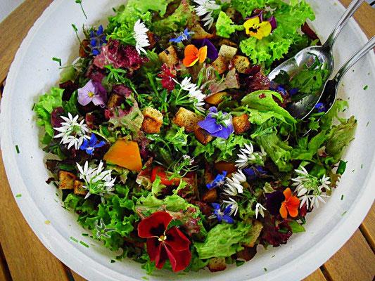 Wildkräuter- und Blütensalat