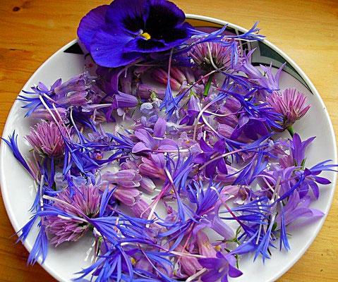Blaue eßbare Blüten; Stiefmütterchen, Glockenblume, Schnittlauch, Kornblume