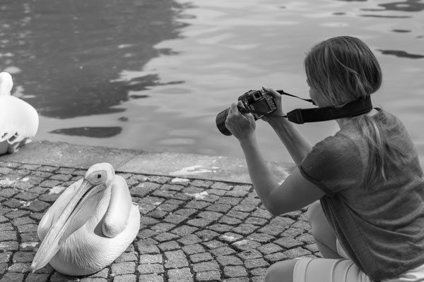 ©Astrid Hansen