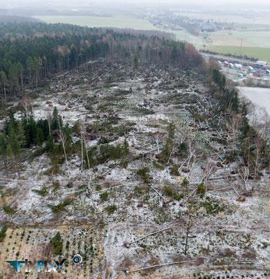 """Inspektionsflug """"Sturmschaden Rossauer Wald"""""""