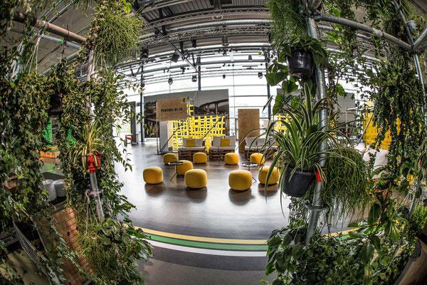 welcome-net, Stuttgart Eventmanagement, Informationsveranstaltung, Dekoration mit Grünpflanzen