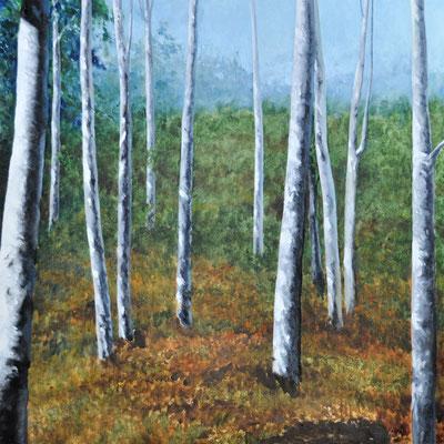 ASPEN TREES-BEDFORD, WYO // 100x100 cm // oil on canvas