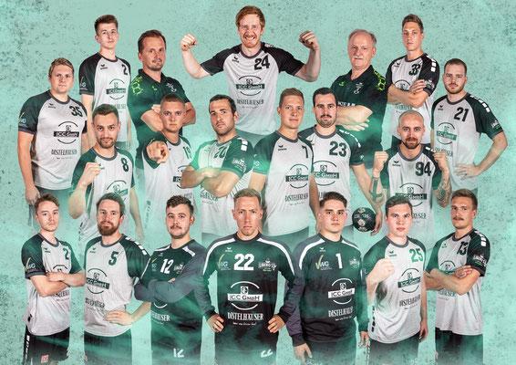 Mannschaftsfoto Handball Bayernliga DJK Waldbüttelbrunn 2018/2019