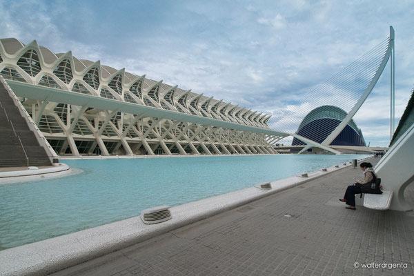 Valencia-Città delle arti e delle scienze-Arch. Santiago Calatrava