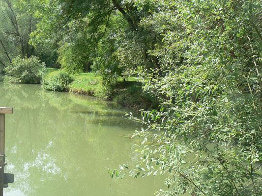 Le gîte est au bord d'un étang privé