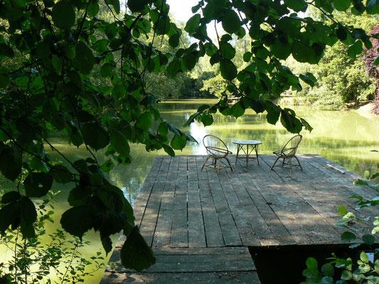 Le calme autour de l'étang