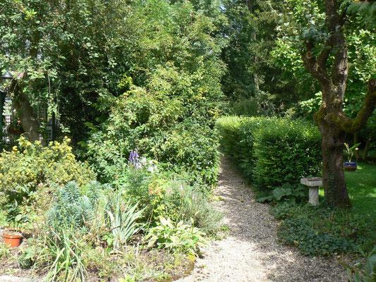 Une petite allée qui mène à l'étang de la maison d'hôtes