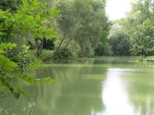 L'étang privé pour une pêche miraculeuse