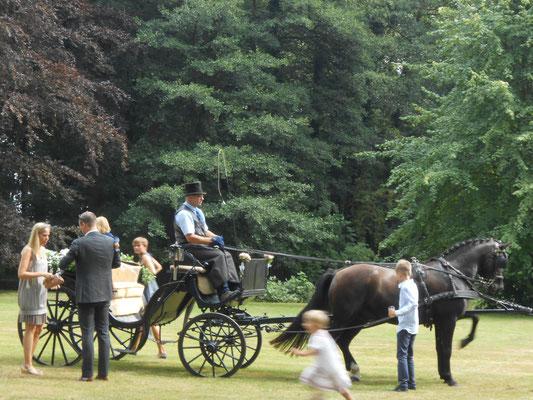 Hochzeitskutsche im Park des Herrenhauses