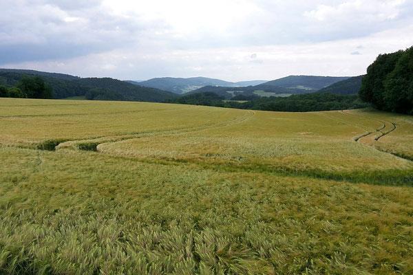 Das thüringische Eichsfeld öffnet weite Ausblicke in die Landschaft.