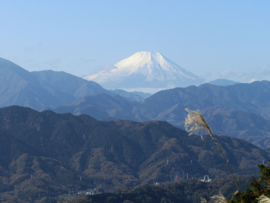 地元高尾山から見た富士山です