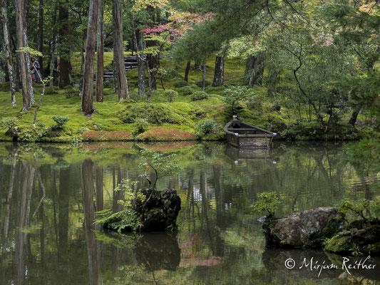 Moosgarten im Saiho-ji Tempel in Kyoto, Japan