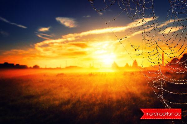 #Sonnenaufgang #Herbst #Sunrise #autumn #Nebel #Schleier #Dunst #Dunkelheit #Trübheit, Sonnenaufgang, Herbst, Sunrise, autumn, Nebel, Schleier, Dunst, Dunkelheit, Trübheit, Marcin Adrian, Marcin_Adrian, www.marcinadrian.de, Marcin Adrian, Stadt Wesseling,