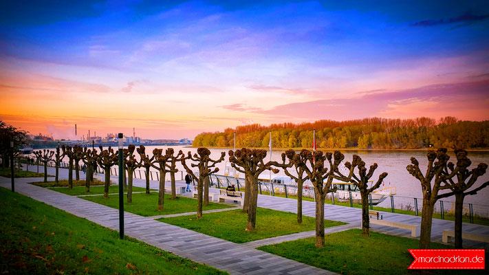 Blick auf die Rheinpromenade der Stadt Wesseling 2019. Marcin Adrian & Magdalena Adrian. Wesselinger Fotograf