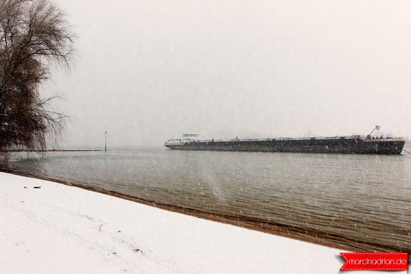Strand am Rhein in Wesseling, Stadt Wesseling im Winter, Schnee und Eis in Wesseling am Rhein 2019 - by Marcin Adrian 2019
