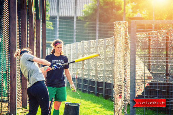 Vermins Baseball & Softball, MLB, DBV, Marcin Adrian, Marcin_Adrian, www.marcinadrian.de, Wesseling, werbekurier, Wesseling #Vermins #Baseball & #Softball #MLB #DBV #Marcin #Adrian #Marcin_Adrian #Wesseling