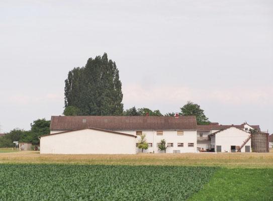 """Der """"Neuhof"""" von Familie Kraft, Landwirtschaft mit ..."""
