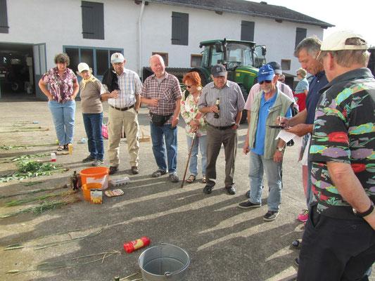 Auswertung und praktische Anwendung der Gerste