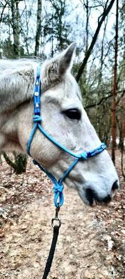 Esprit mit seinem babyblauen Knotenhalfter de Luxe