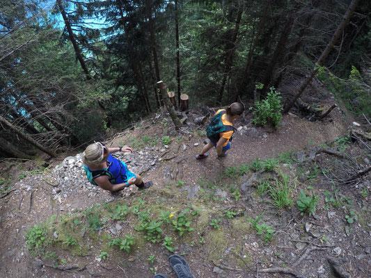 Waldstück runter nach Brienz
