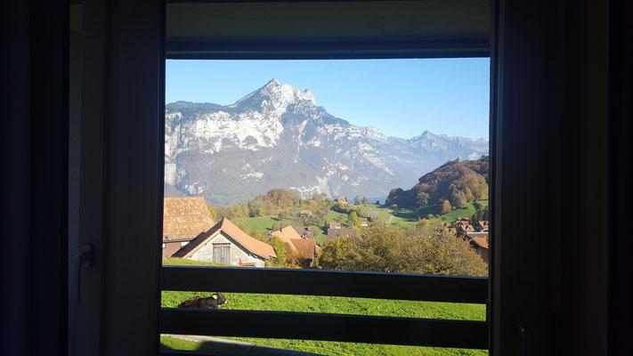 Schwimmkurs: Unsere Aussicht aus dem Hotelzimmer