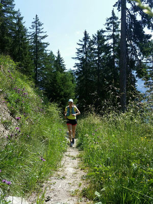 Trailrun auf die Alp Fops