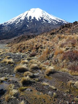 Start der 19.4km langen Tongariro Alpine Crossing Wanderung. Im Hintergrund der Vulkan Ngauruhoe. Für die Herr der Ringe Kenner: Dies ist Mordor