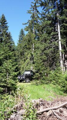 Unser Campingplatz schön im Wald