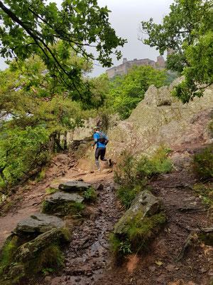 Trailrun 3-Burgen