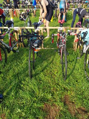 Bike-Check done - nicht wir früher mit Triathlonräder, sondern mit unseren alten Rennräder