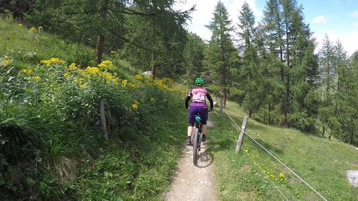 MTB Rundtour Sils - Val Fex - Lägh da Cavloc