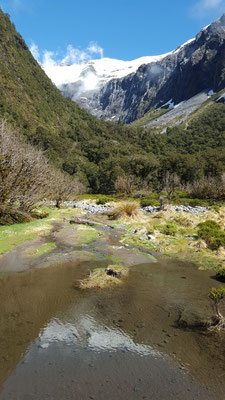 Untwegs nach Milford Sounds