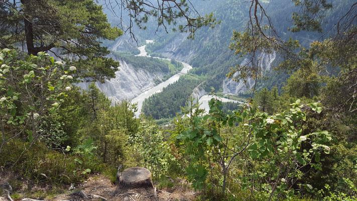 Tolle Aussicht auf die Rheinschlucht