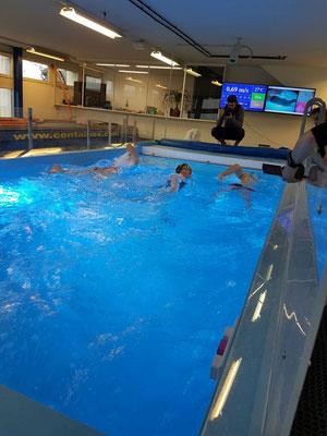 Einschwimmen zu Dritt
