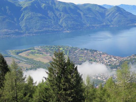 Aussichtsplattform Passerelle - Aussicht über Locarno und Ascona