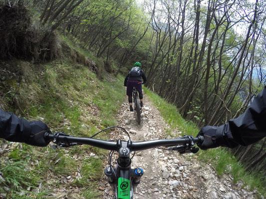 Bikingtour Dosso dei Roveri