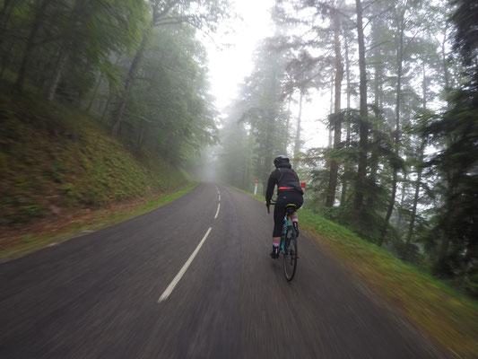 und nochmals eine Radtour