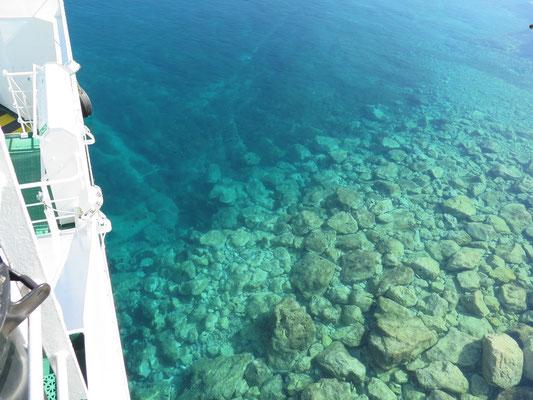...und das kann man hier extrem gut, den auch hier ist das Wasser selbst im Hafen glasklar