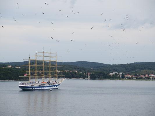 Glaubt man den Kroaten ist dies anscheinend das grössste Segelschiff der Welt!?
