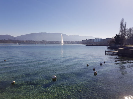Jogging nach Genf
