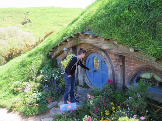 Hobbiton: die Filmkulisse von Lord of the Ring und The Hobbit